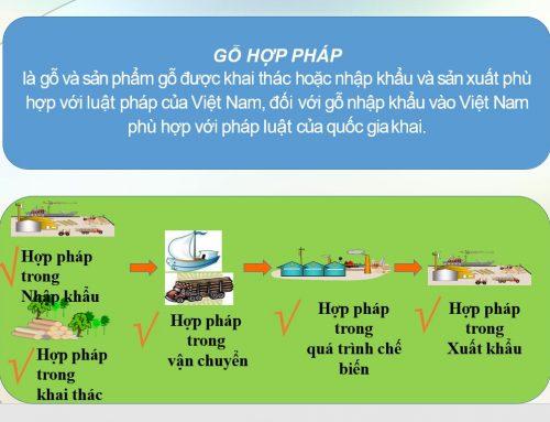 Định nghĩa gỗ hợp pháp của Việt Nam