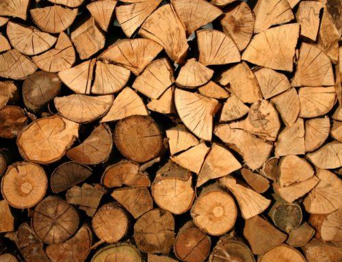 Quản lý và kiểm soát gỗ và sản phẩm gỗ nhập khẩu đi vào VNTLAS