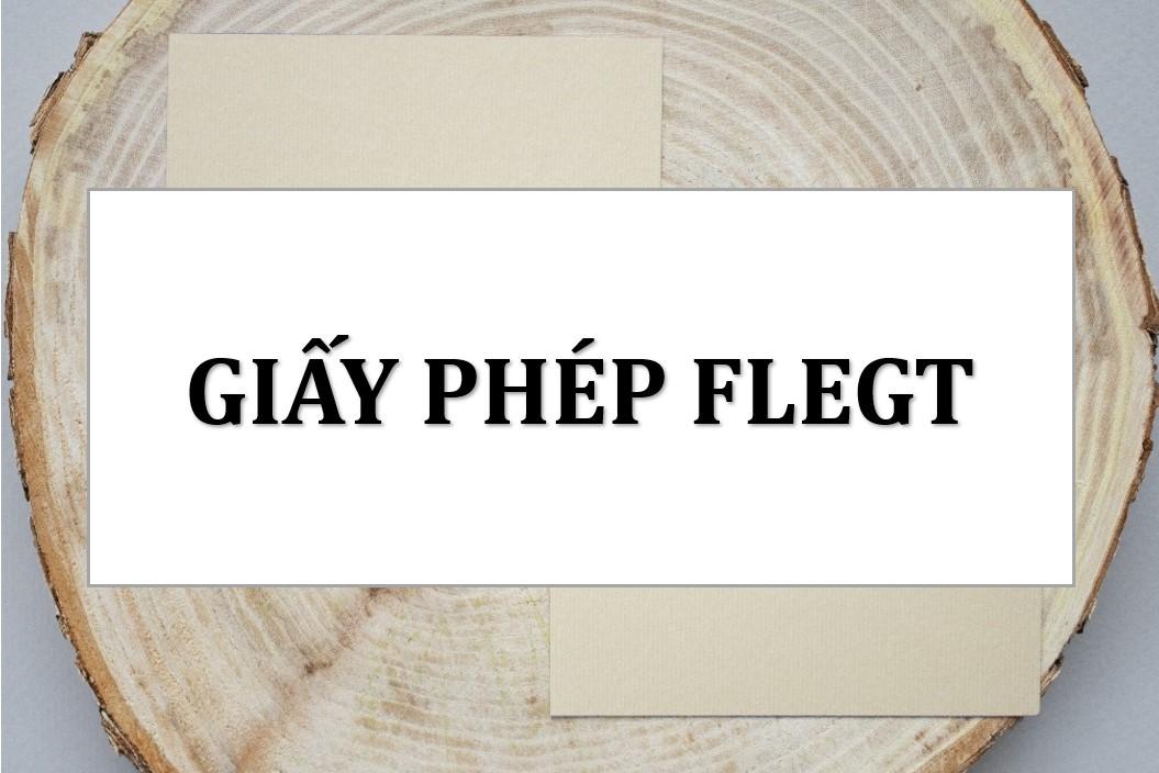 Giấy phép FLEGT là gì? Cơ quan chịu trách nhiệm cấp giấy phép FLEGT?