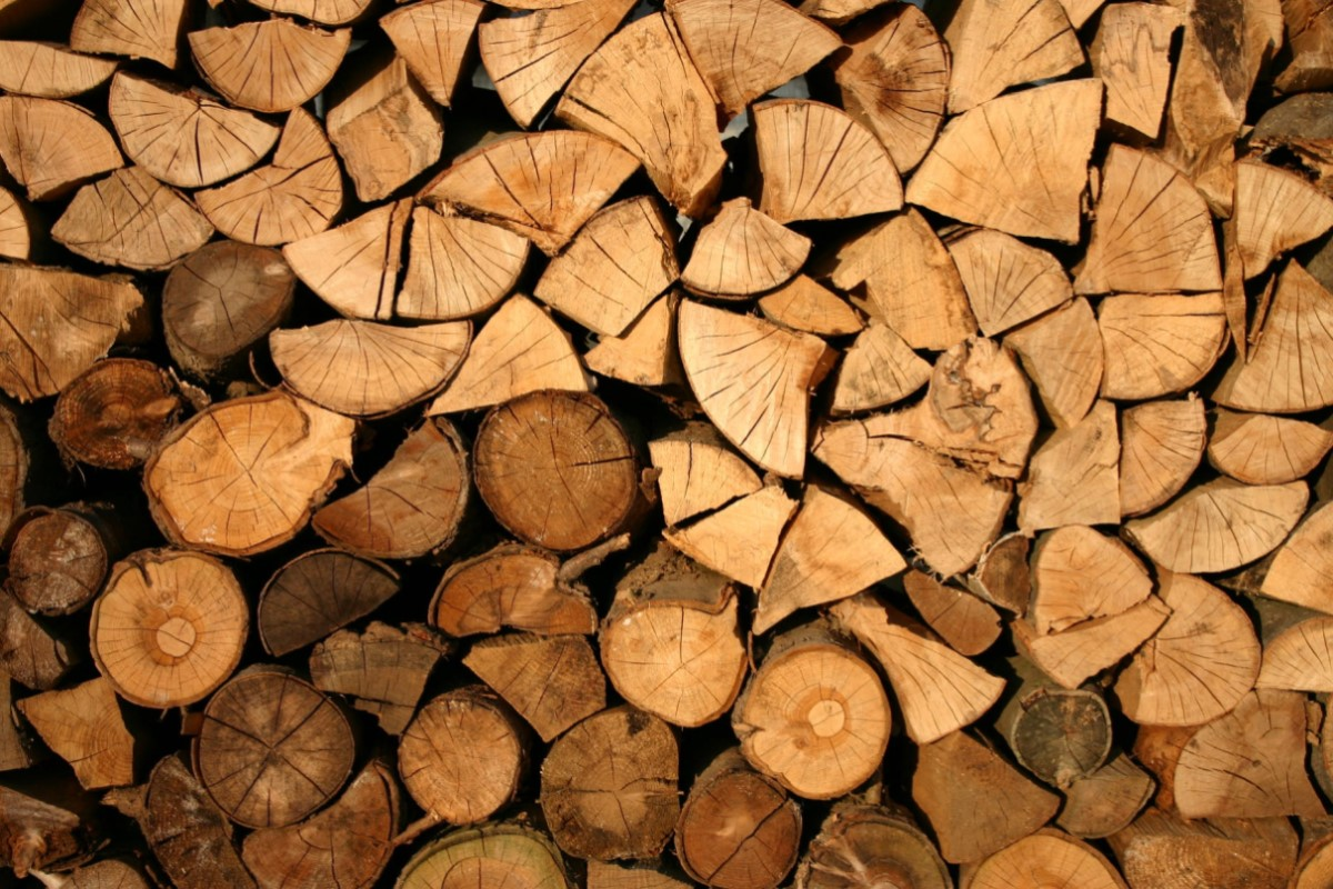 Quản lý và kiểm soát gỗ và sản phẩm gỗ nhập khẩu đi vào VNTLAS ...